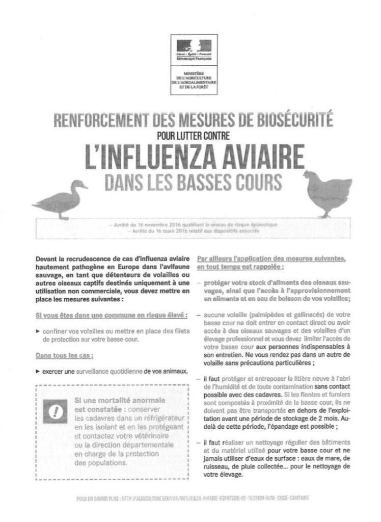 Renforcement des mesures de biosécurite pour lutter contre l'influenza aviaire dans les basses cours.